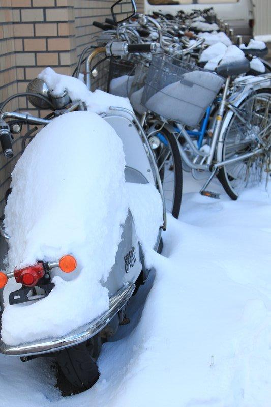 Snowed scooter