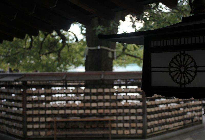 prYer tree - meiji shrine