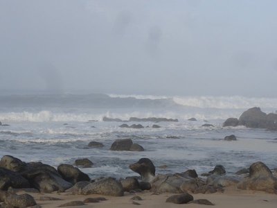 Wild waves at the beach