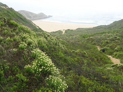 Looking across the gap to the beach on the other side