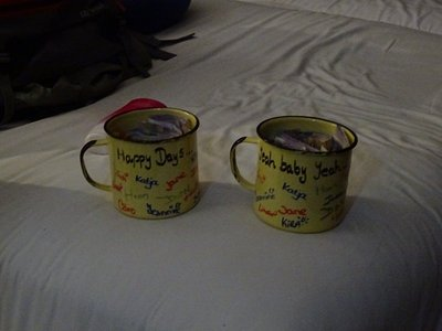 The decorated cups for Gareth and Nkosi