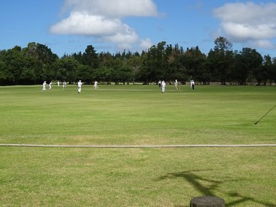 The cricket players on the green