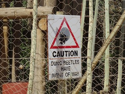 Dung beetle warning sign