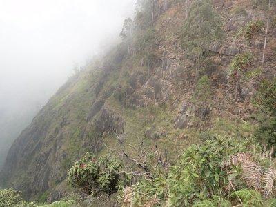 View near Echo Rock