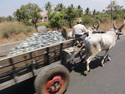 Ox cart on the highway