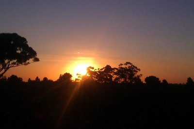 sun set in barossa valley