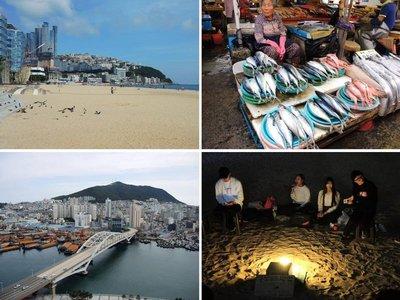 Busan Travel Blog