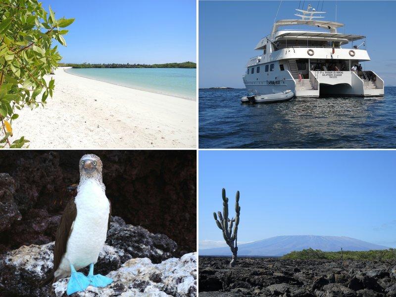 large_Galapagos1.jpg