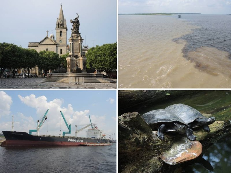 large_Manaus.jpg