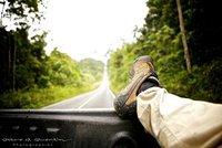 ROAD TRIP IN KHAO YAI JUNGLE