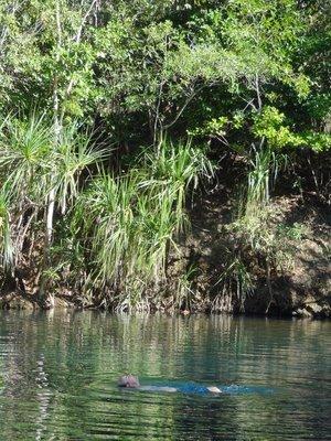Bethany's favourite swim, Berry Springs