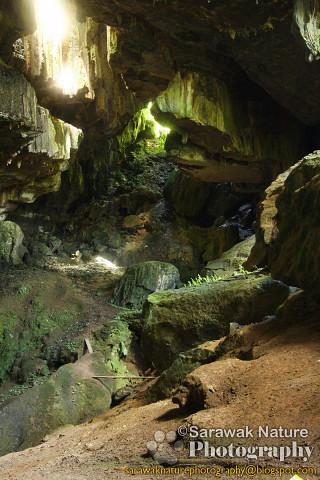 Bukit Sarang