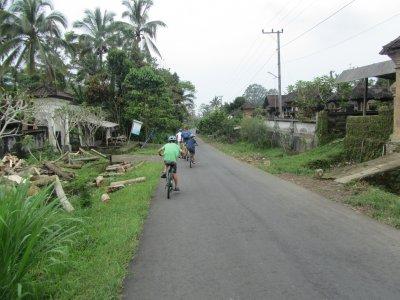 Boys riding down road on bikes