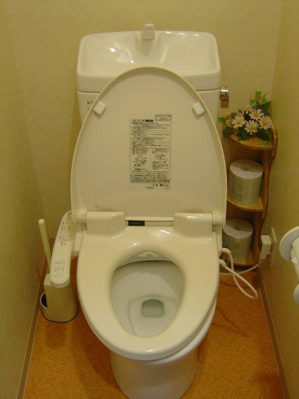 High tech toilet!