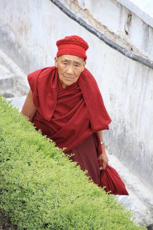 Frindly Monk
