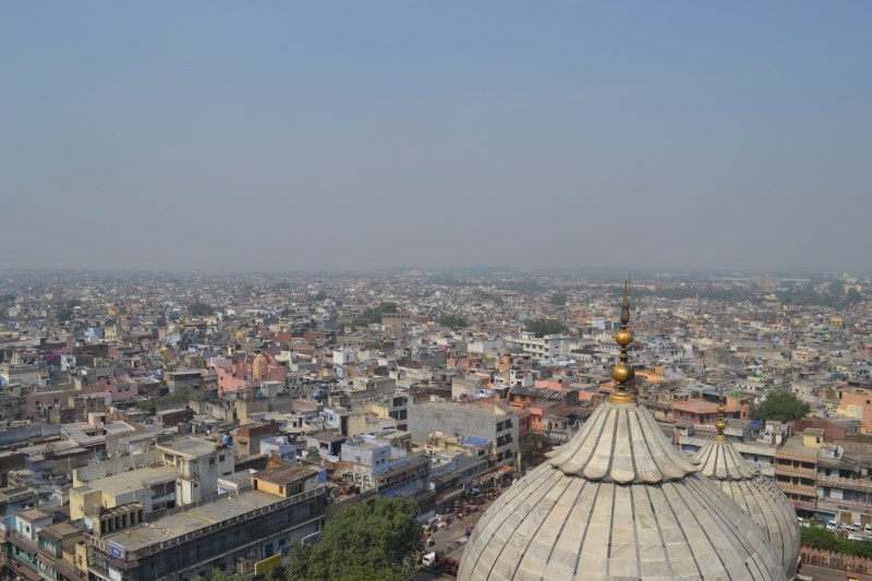 View from the top of the minaret at Jama Masjid