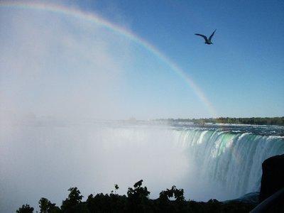 niagara_falls6.jpg