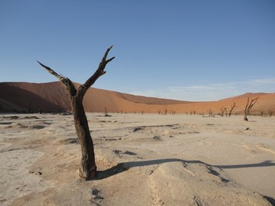 Deadvlei (the must-have Namibian photo)