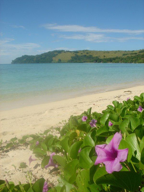 Beach on Nanuna-I-Ra Island