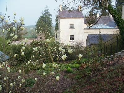 1124883-Magnolia--Elizabeth--and-the-house-0.jpg
