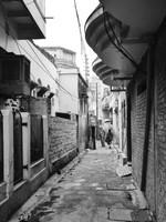 Varanasi_A street scene 4