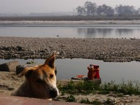Haridwar_By the Ganges in the sadhu colony