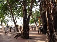 187406-Bambolim-Beach-Resort-1