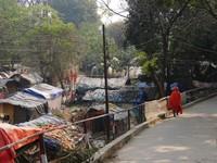 Haridwar_The sadhu colony