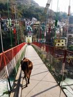 Devprayag_The suspension bridge to the town