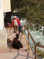 Devprayag_Many, many steps down to the bridge across the Bhagirathi River