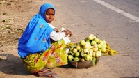 Guavas for sale on the way to Abnaheri