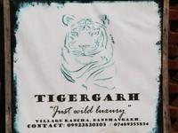 Bandhavgarh_Tigergarh.JPG