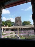 Meenakshi Temple, Madurai (5)