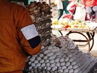 Varanasi_Eggs galore in the chicken market