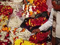 Varanasi_Flower purchase in the market