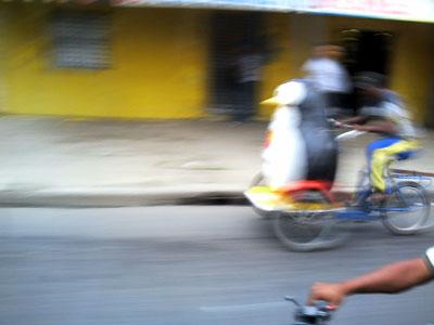 Penguin bike on the streets of Santa Domingo