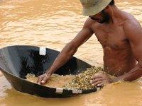 Diamond Miners at Cempaka