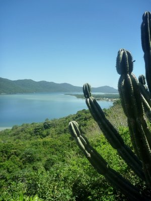 Lagoa da Conceição - a 13km long, fresh and saltwater lagoon in the centre of the island