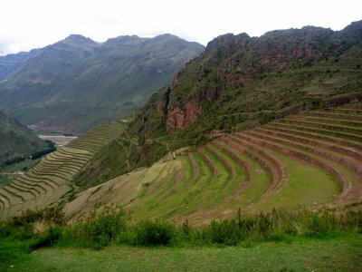 Incan crop terraces just outside Cusco