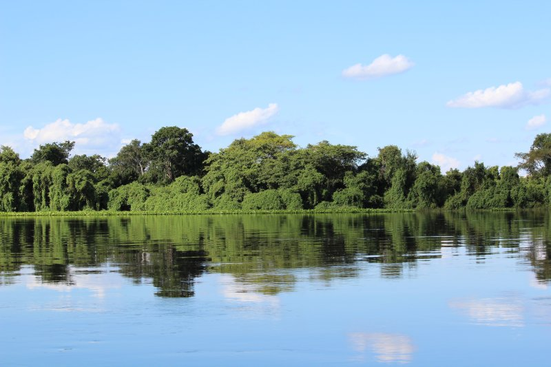 Ok, even if it didn't last long, it was a gorgeous boat trip through the Pantanal!