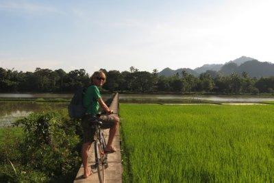 Cycling through the rice paddies
