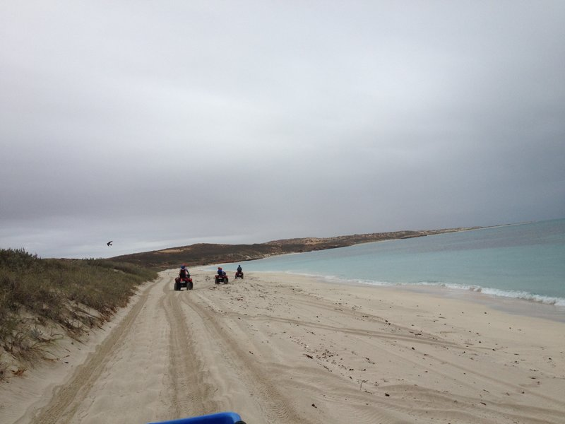 Quad bikes on the beach near Coral Bay
