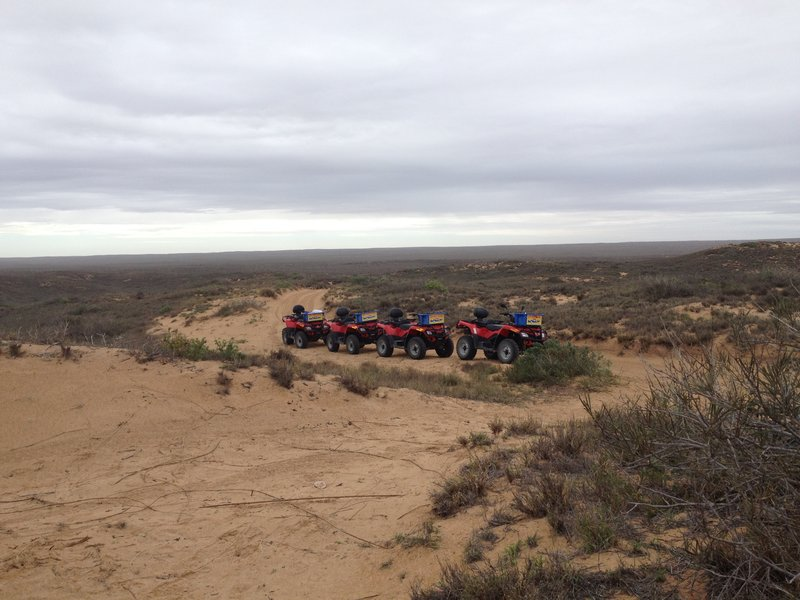 Quad bikes near Coral Bay