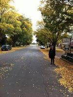 Streets lined with autumn leaves