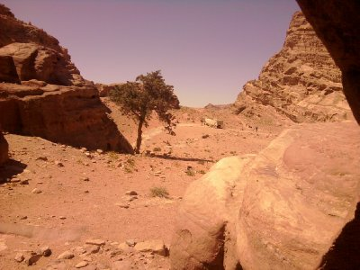 Petra Resting in Cave