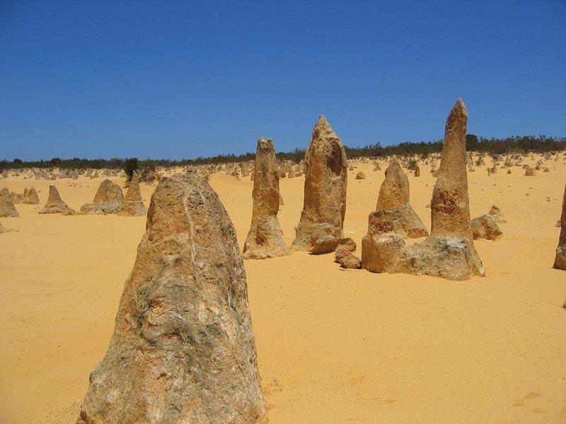 The Pinnacles - Western Australia