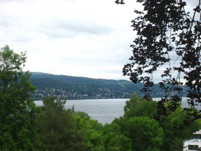 view from park by museum rietberg