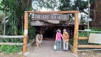 9 Lions Den