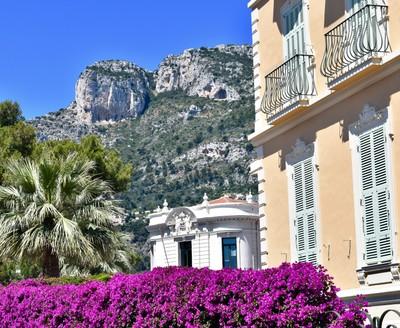 Monaco_HouseFlowers.JPG