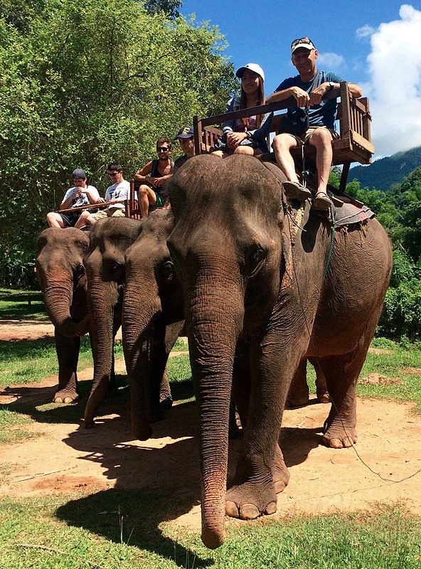 large_Laos_ElephantHowdahsLine.jpg